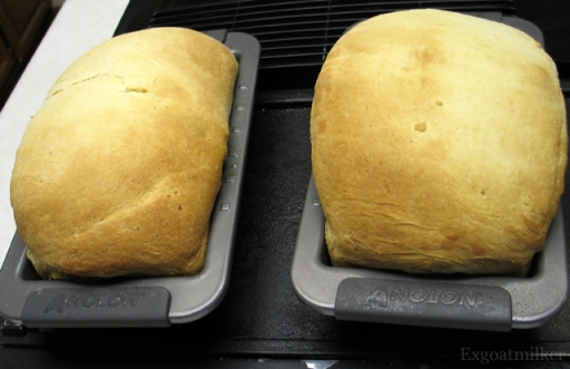 Potatobread
